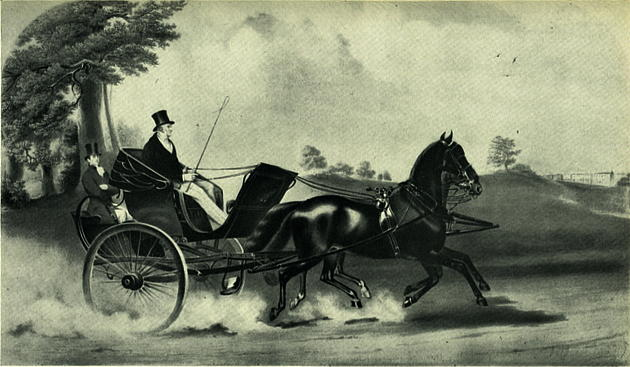 A Man riding on a Coach