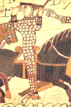 William as shown in the tapestry